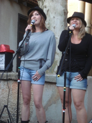 MJC Montchat, Lyon 3e, juin 2011